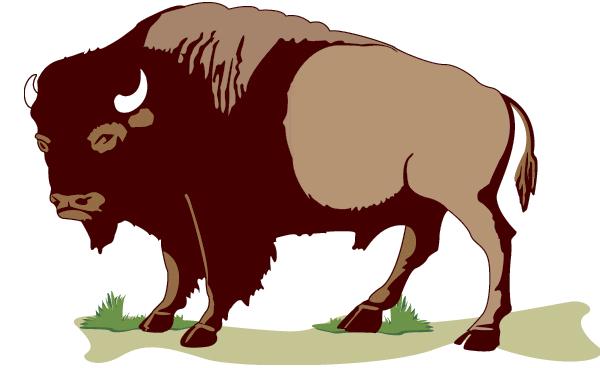 buffalo USGS - /animals/B/buffalo/buffalo_USGS.png.html
