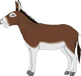 Donkey Profile Animals D Donkey Donkey Profile Png Html