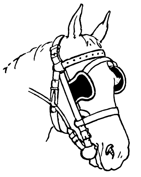 Ubbthreads moreover 122863896057541107 in addition 5p1t6 Won T Crank Replaced Battery Solenoid 3 Safety Switches as well 2014 Hyundai Veloster Engine Wiring Harness moreover Horse Coloring Pages. on pony harness