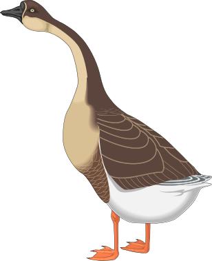 416 mother goose clipart free  Public domain vectors