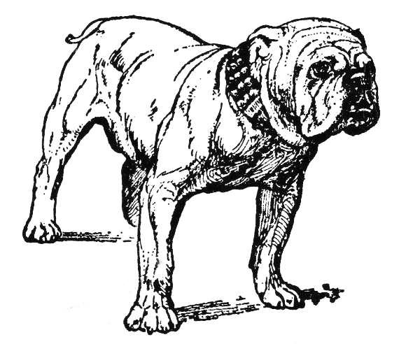 Dogs And Cats Clip Art Black And White