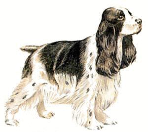 Animated Dog Images Free