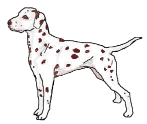 Cartoon Dog Black And White Image