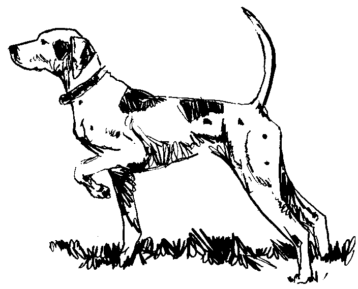 pointer 3   animals  dogs  p  pointer 3 png html dog clipart svg dogs clip art images
