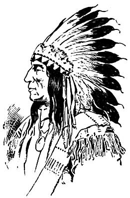 Grand Sachem AmericanHistoryNativeAmericansvarious