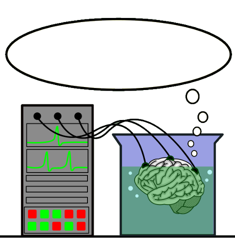 brain in a vat thought bubble   blanks  callouts  other thought bubble clip art google thought bubble clip art minion
