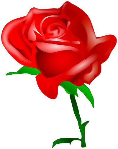 red rose   holiday  valentines  flowers  red rose png html clipart flowers to print clip art flowers free images