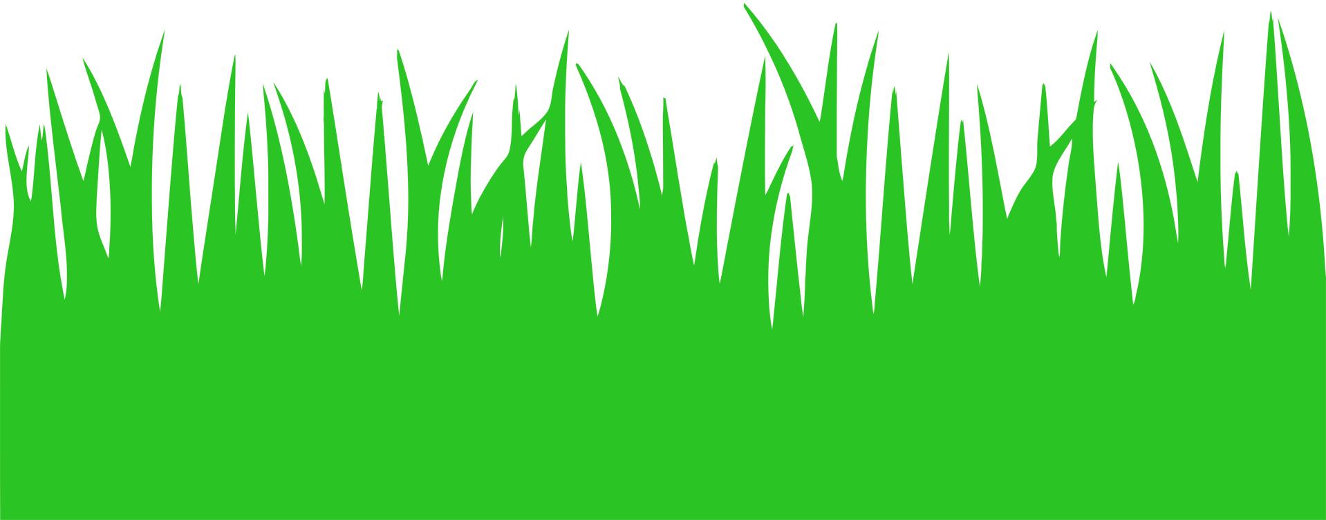 Трава из цветной бумаги шаблоны для открытого занятия