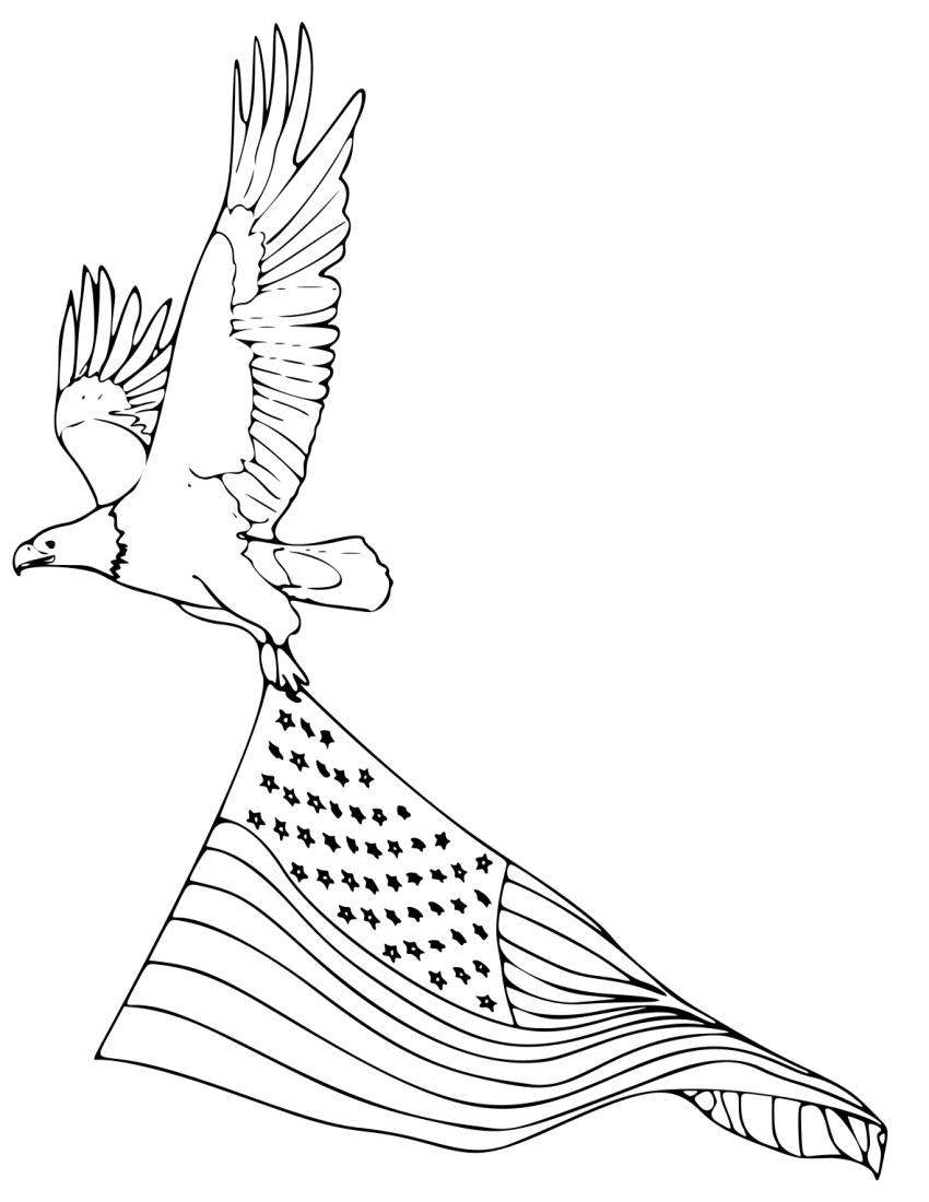 Coloring Book Bald Eagle 2