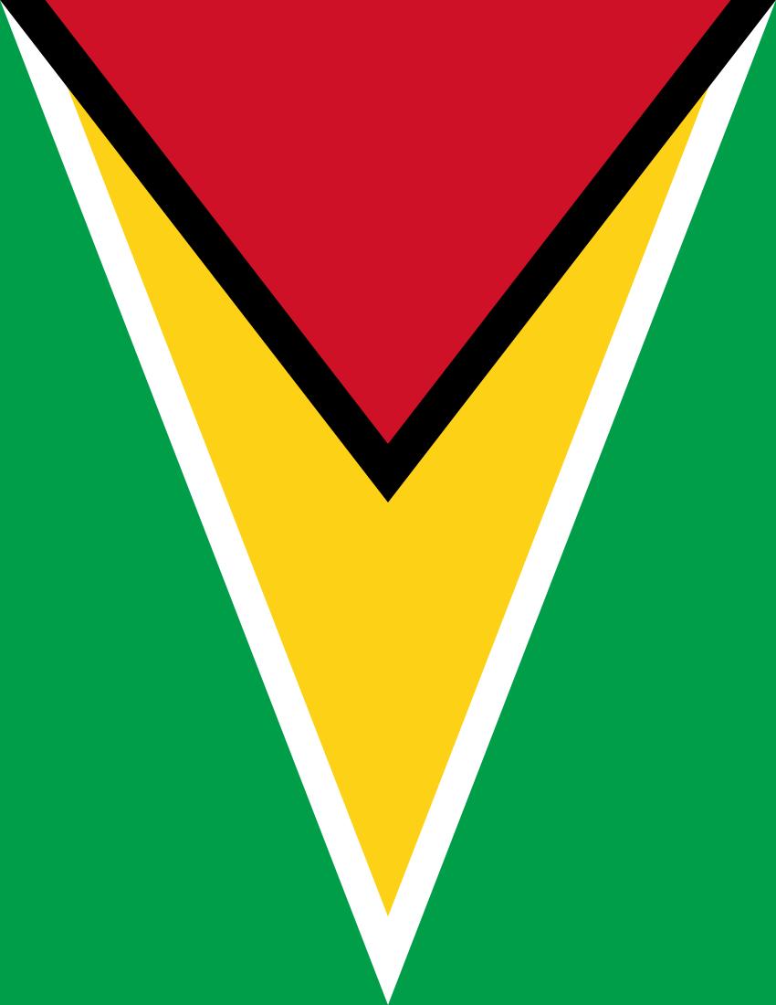 guyana flag full page - /flags/countries/g/guyana
