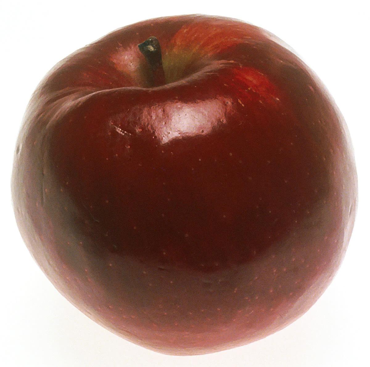 apple large   food  fruit  apple  apples 2  apple large jpg html apple clip art image apples clip art free