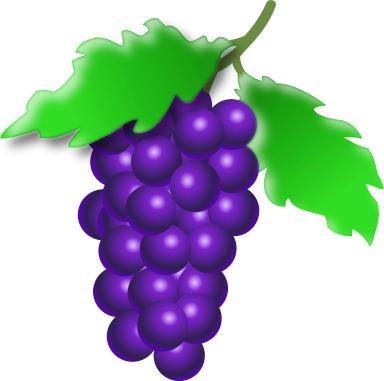 grapes on vine 1   food  fruit  grapes  more grapes  grapes grape vine clip art black and white grape vine clip art border