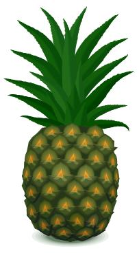 Pineapple Food Fruit Pineapple Pineapple Png Html