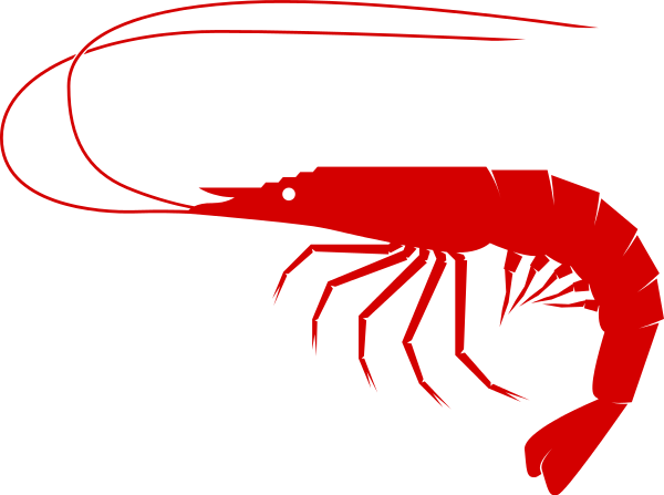 shrimp clip art - /food/seafood/shrimp/shrimp_clip_art.png.html