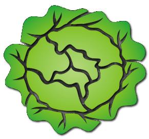 lettuce   food  vegetables  lettuce  lettuce png html clipart lettuce leaf lettuce clipart black and white