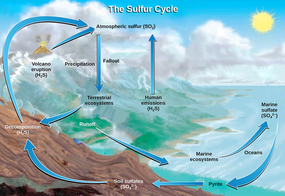 Sulfur Cycle Usgs  Geography  Diagrams  Sulfur Cycle Usgs