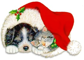 Christmas Dogs And Cats Png