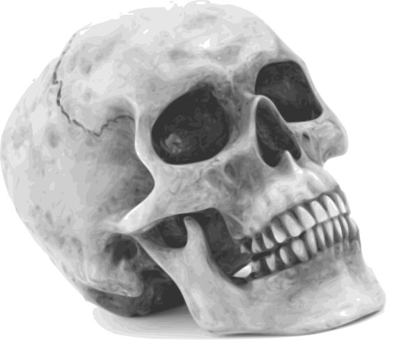 halloween skull - /holiday/halloween/skull/halloween_skull.png.html