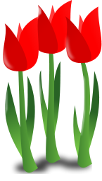 mothers day icon tulips