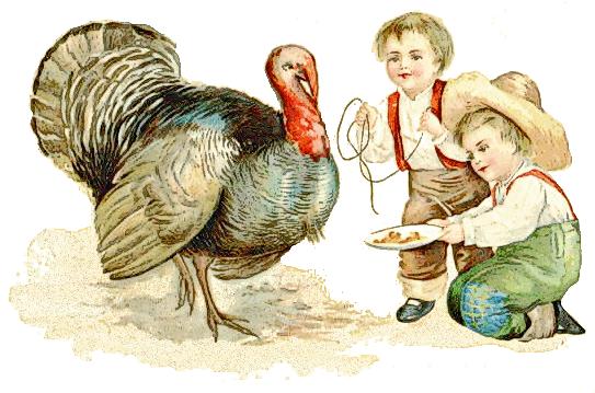 Thanksgiving Antique 1909 Holiday Thanksgiving Turkeys