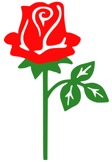 Rose With Stem Holidayvalentinesflowersrosewith