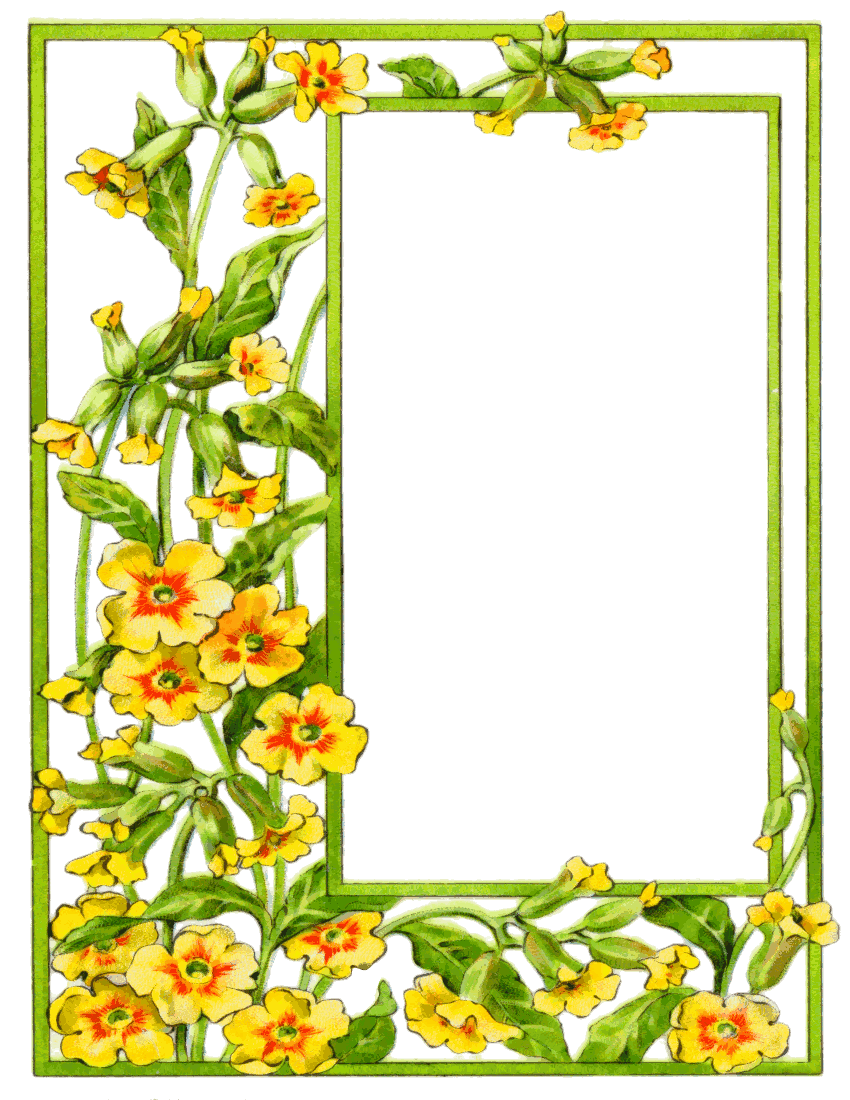 card frame yellow flowers - /page_frames/floral ...