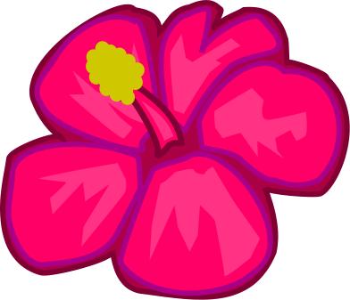 Bold Pink Flower Plants Flowers Abstract Flower Flower