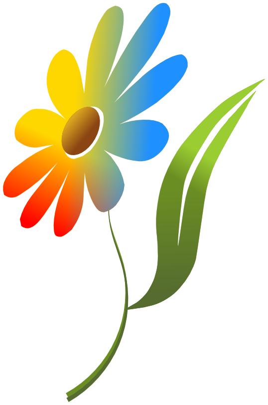 Flower multi color plantsflowerscolorsflowermulticolorgml voltagebd Image collections
