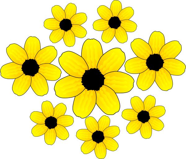 Yellow flowers plantsflowerscolorsyellowfloweryellowflowers yellow flowers plantsflowerscolors yellowfloweryellowflowersgml voltagebd Image collections