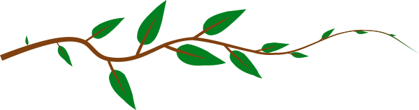 alternate leaf stem   plants  leaf  leaf types  alternate leaf stem png html leaf clip art black and white leaf clip art free