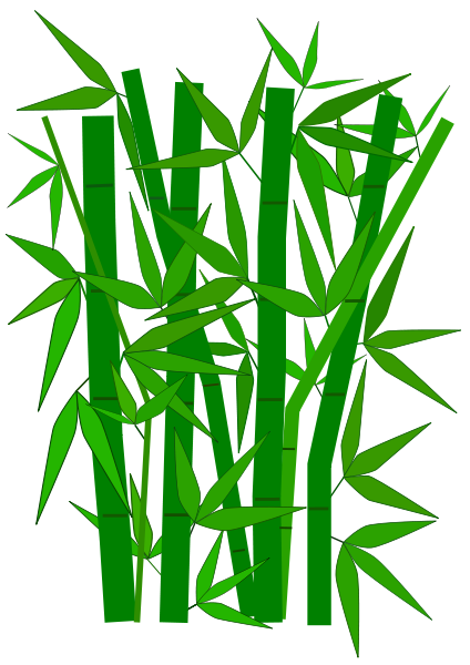 Bamboo Plants Trees Bamboo Bamboo Png Html