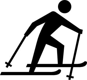Image Result For Ski Cross