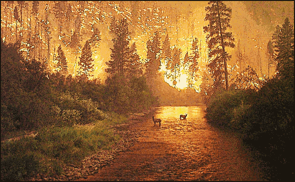 deer fire   scenic  deer fire png html clipart download free without restrictions clipart downloads for free
