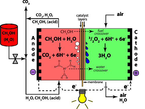 Direct Methanol Fuel Cell Methanol and Water Crossover